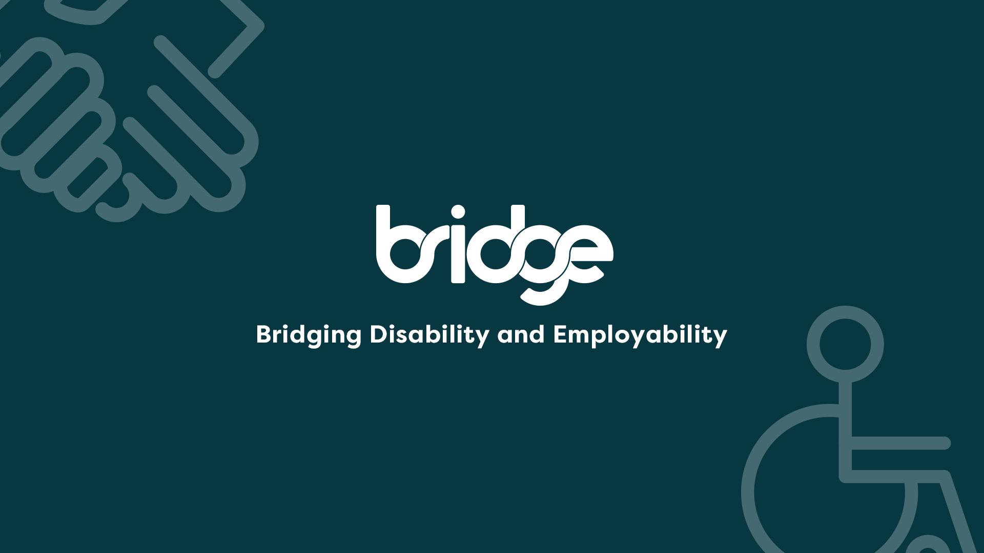 Bridge: Disability and Employment